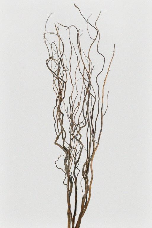 wedding ideas willow decor pin dried branches curly decorative