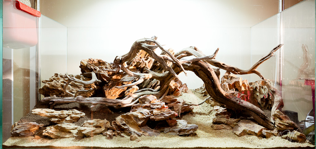 Choosing the Best Aquarium Driftwood