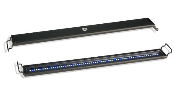 satellite plus is among the best planted aquarium lights in the world