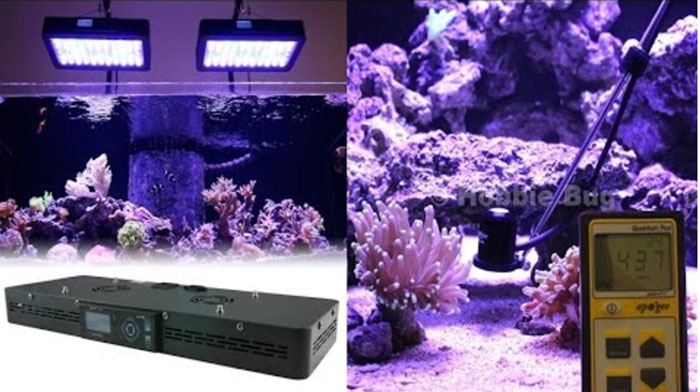 Euphotica remote control LED saltwater lighting system
