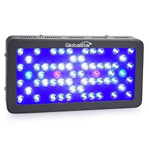 Globalstar LED lighting unit. Extremely bright and great for shallow or deep coral aquariums.