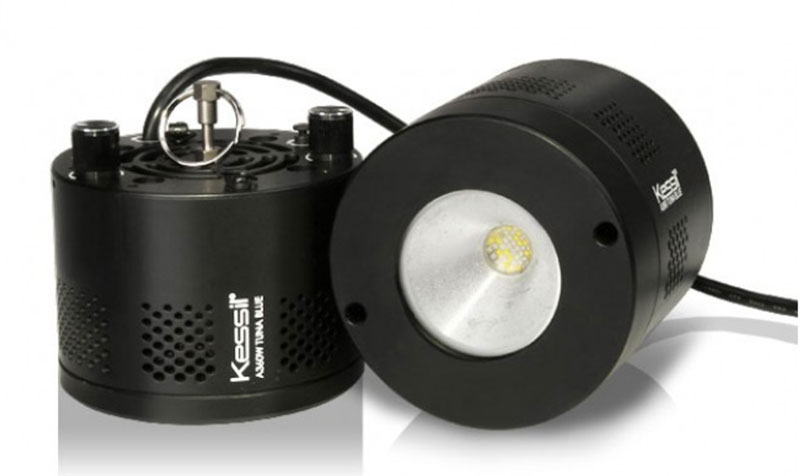 Kessil Saltwater LED, a beautiful coral growing light that is one of the best choices on the market.