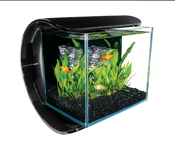 Top 10 Best Fish Tanks August 2017 Review Picks Aquarium Info