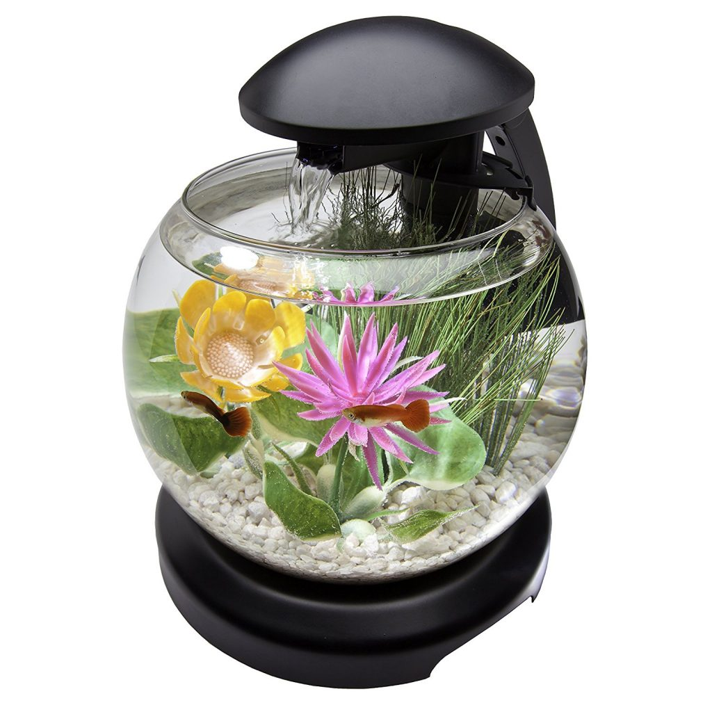 Top 10 best fish tanks august 2017 review picks for Best fish tanks